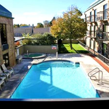 Stratford Court Hotel : Pool