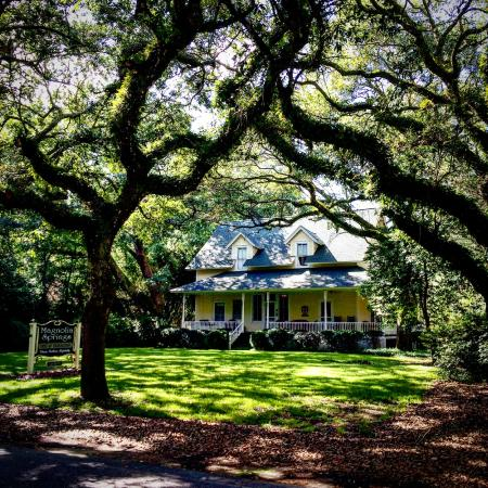Magnolia Springs Bed & Breakfast : Out front