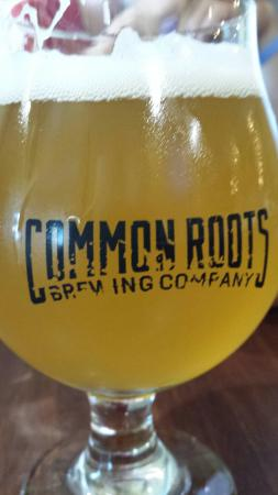 South Glens Falls, นิวยอร์ก: Common Roots Brewing Company