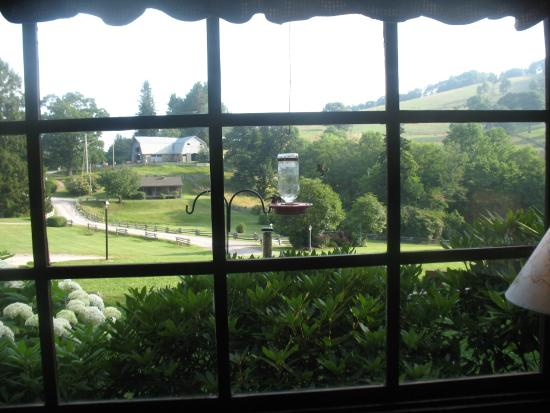 The Cataloochee Ranch: Humming birds outside the living room window