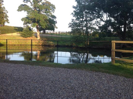 Wheatacre Hall Barns: Our neighbours