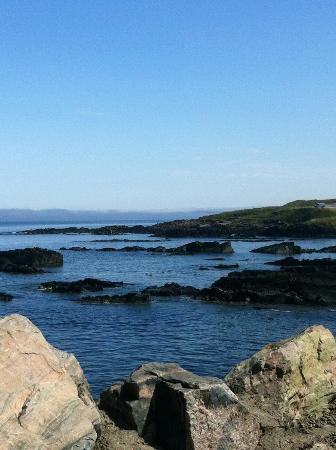 Macduff Marine Aquarium: Just beautiful