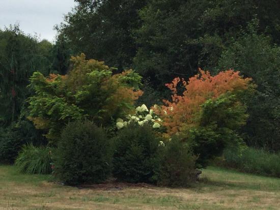 The Inn At Crippen Creek Farm: gardens