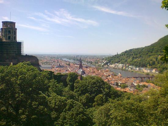 Heidelberg Castle Tours In English