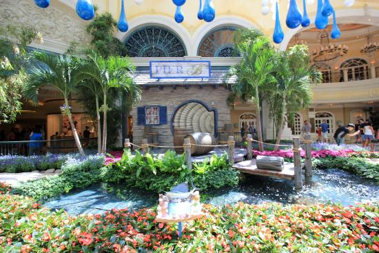 Bellagio Conservatory And Botanical Gardens Summer 2015 Picture Of Conservatory Botanical