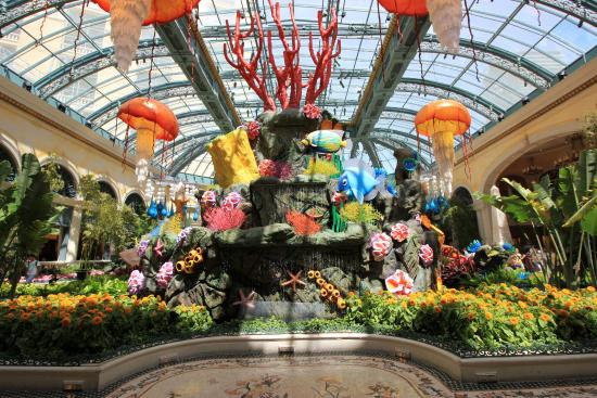 Bellagio Conservatory And Botanical Gardens Summer 2015