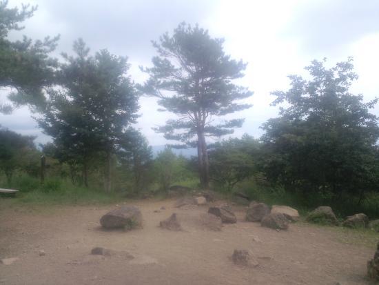 Mt. Tennyo: 山頂風景