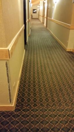 MountainView Lodge & Suites: damage in hallway