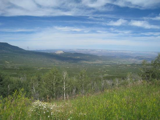 Grand Junction, CO: Grand Mesa