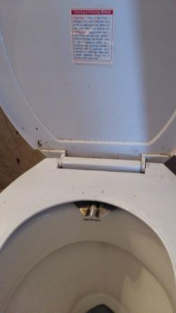 Hotel R Maidens: Dirty toilet in room at Hotel R Maiden