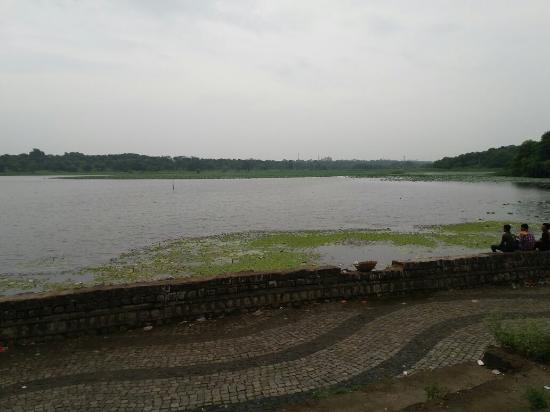 Futala lake - Picture of Futala Lake, Nagpur - TripAdvisor