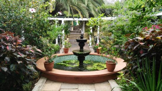 Orqu deas en el jard n picture of jardin de orquideas de for Jardines tenerife
