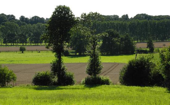 L'Angeviniere - Gites et Chambres D'Hotes : Lisière d'entre la Normandie et la Bretagne...