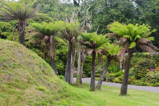 Logan Botanic Garden