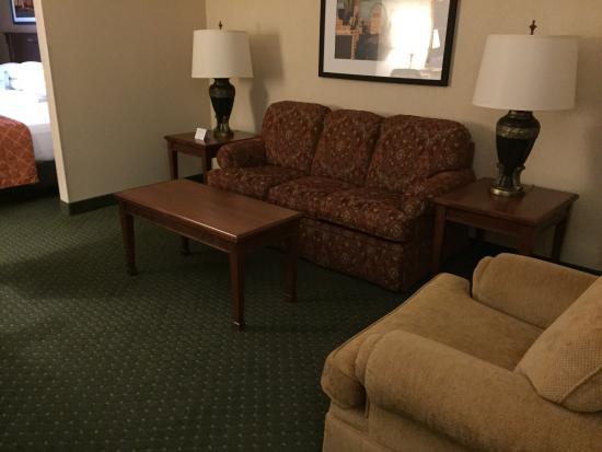 Drury Plaza Hotel St. Louis - Chesterfield: photo9.jpg