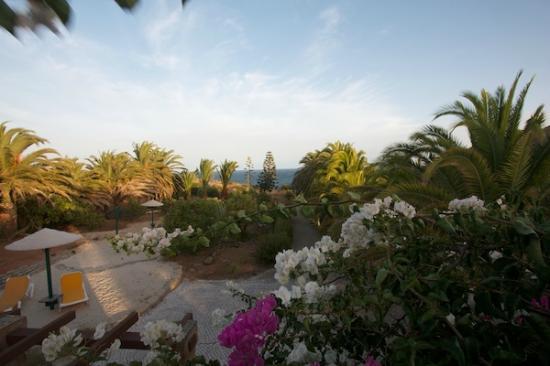 Quinta Do Mar Da Luz: Vue du parc