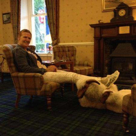 Loch Kinord Hotel: the fluffy sheep near the fireplace