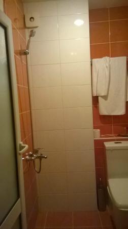 Family Hotel Madrid : Bad
