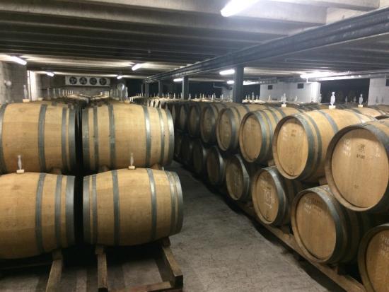NZWINEPRO - Auckland Wine Tours: Kumeu River