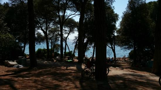 Vila Kristina: Beach, looking through treesof the park