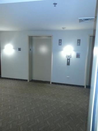 Comfort Suites Grayslake : Room
