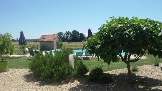 restaurant et chambre d'hôte : jardin