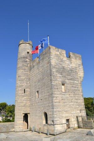 Tour Philippe le Bel : Le haut de la tour pris de la terrasse