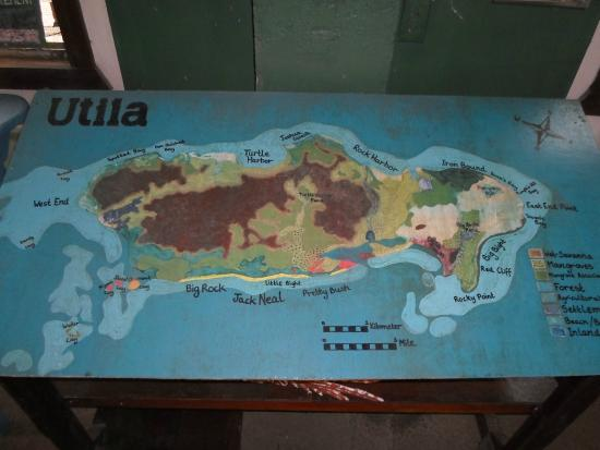 Iguana Research & Breeding Station : Inside the visitors' centre