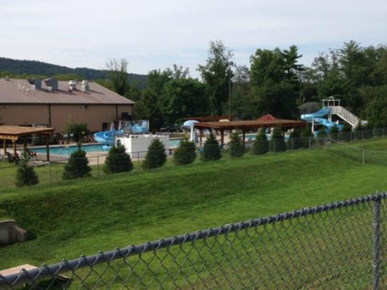 Twin Grove RV Resort & Cottages : Full View of Pool