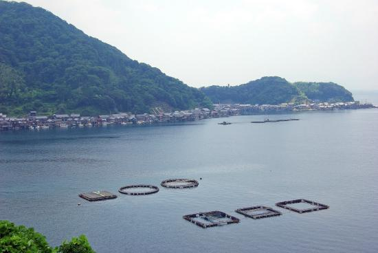 Michi-no-Eki Funaya no Sato Ine: A view of Ine Bay with boathouses and fish farming operation 2