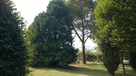 Agriturismo Rio Manzolo: Il giardino