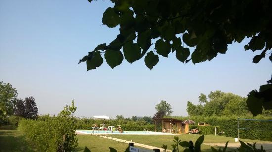 Agriturismo Rio Manzolo: Verso la piscina fra i frutteti