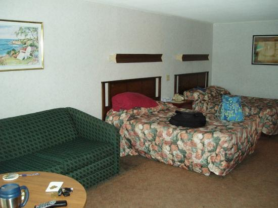 Town 'n Country Motor Lodge: Sitting Area & Two Double Beds
