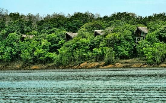 Juma Amazon Lodge: Lake view bungalows.