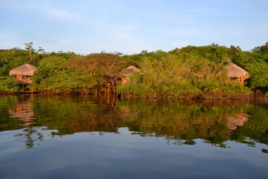 Juma Amazon Lodge: Lake view bungalow.