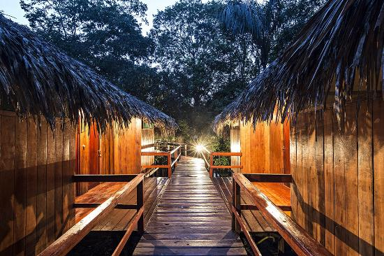 Juma Amazon Lodge: Forest view bungalows.