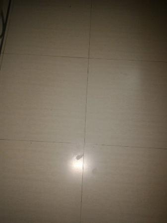 Hotel Adarsh Palace: Dirty Rooms