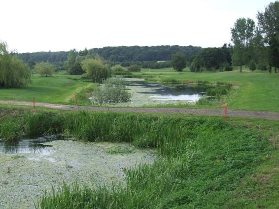 Wensum Valley Golf