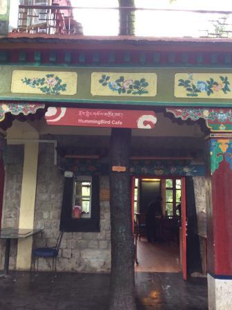 Norbulingka Institute: Hummingbird cafe