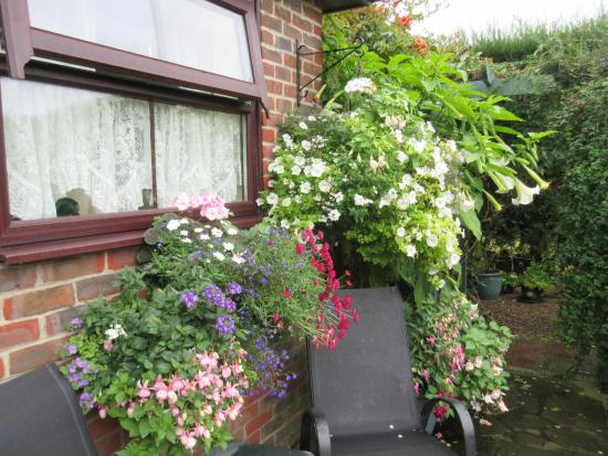 Fishbourne, UK: Colourful window boxes and hanging baskets outside a garden room ...