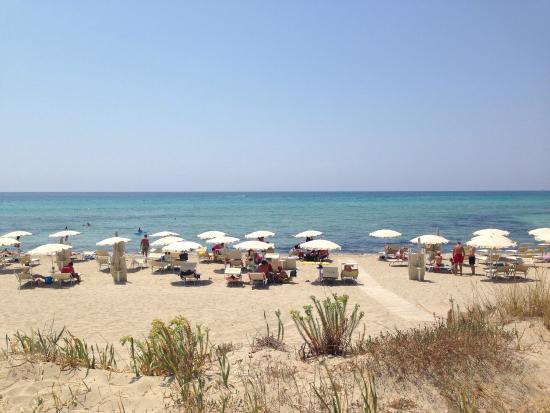 Matrimonio In Spiaggia Ugento : Matrimonio in spiaggia picture of campeggio resort riva di