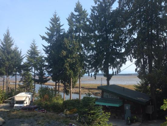 site 140 picture of living forest oceanside campground. Black Bedroom Furniture Sets. Home Design Ideas