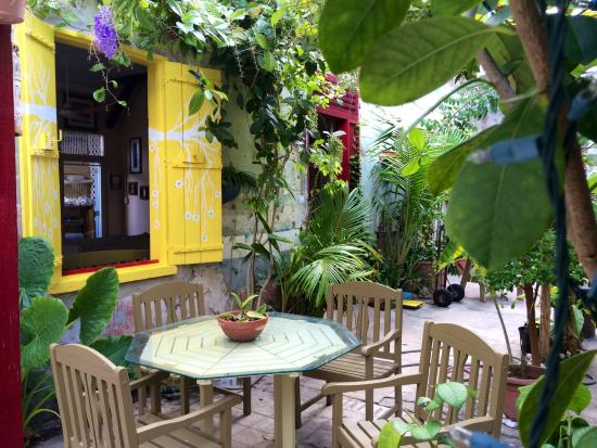 El Patio De Sole: Beautiful Indoor Patio, Full Of Tropical Plants, Trees And