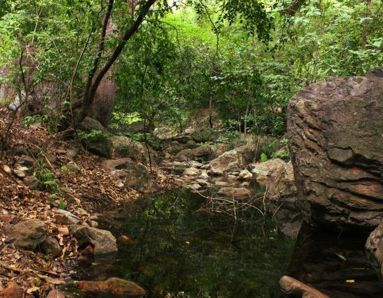 Tada Falls: Way to top