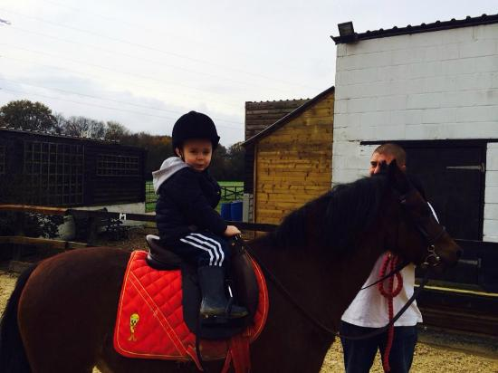 Little Abbots Farm Riding School