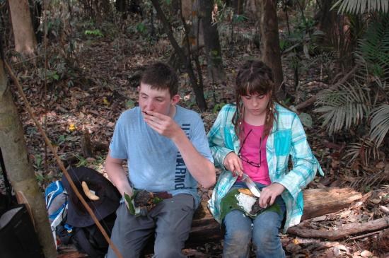 "Amazonia Expeditions' Tahuayo Lodge : Eating a jungle meal from jungle ""plates"" - freshly caught fish."