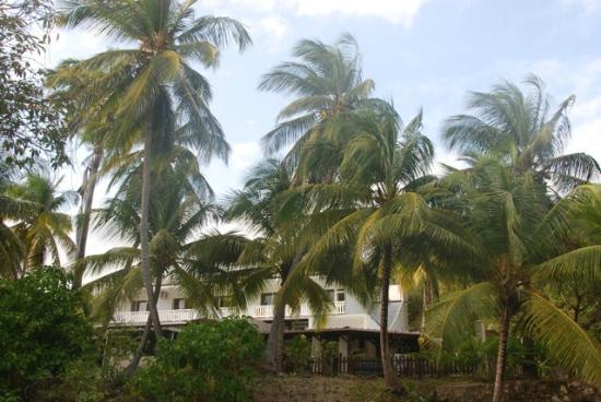 Le M Hotel Marie Galante : L hôtel vue globale