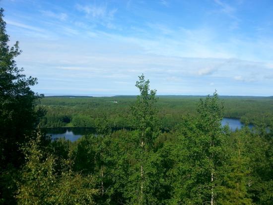 Arkhangelsk Oblast, Rosja: Вид на окрестности с Секирной Горы