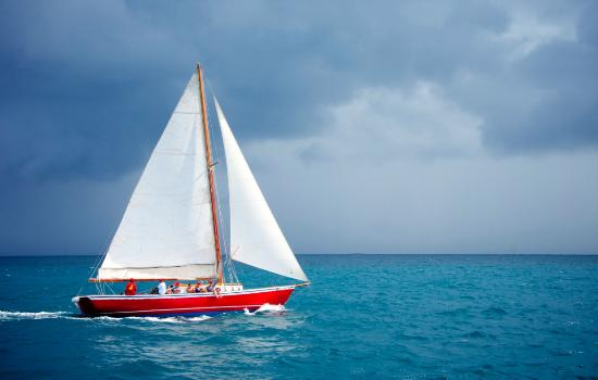 Savvy Sailing Adventure