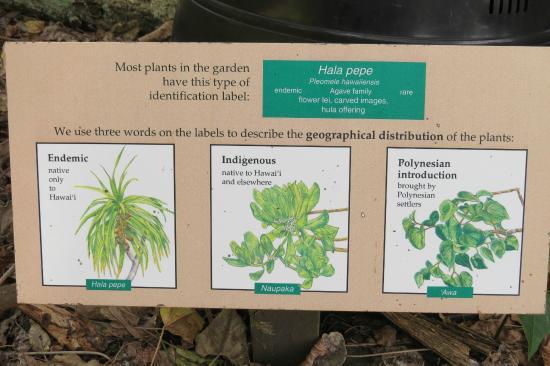 Amy B.H. Greenwell Ethnobotanical Garden: Plant Sign Description